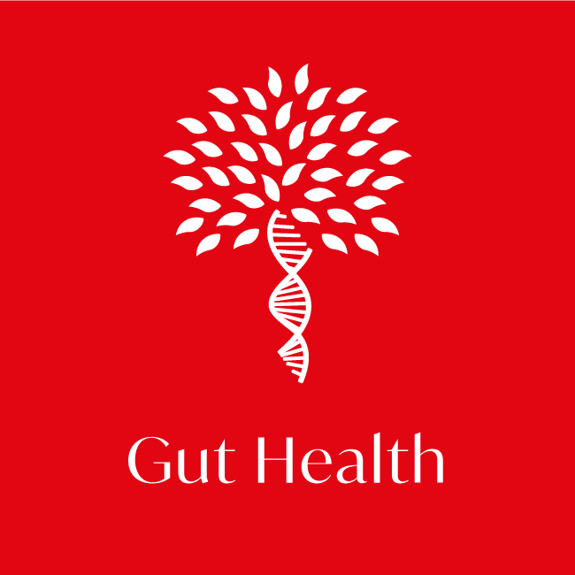 Gut Health health test icon