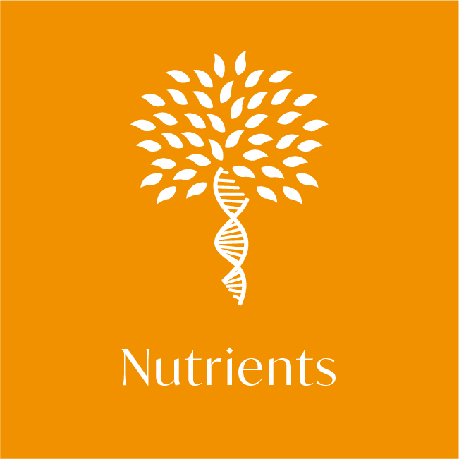 Nutrients health test icon